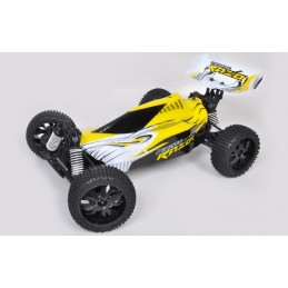 Razor Pirate 4 x 4 RTR 2.4 GHz T2M