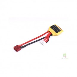 Load balancing Lipo 2x2s cord outlet dean