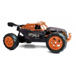 Buggy MaXarea Fast 2.4 GHz 1/14 RTR Siva