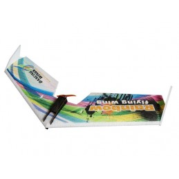 Rainbow V2 flying wing E05 800 m alone DW Hobby Kit