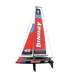 Mini Catamaran Binary V2...