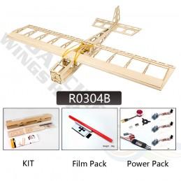 Stick -06 580mm R03 PNP + entoillage Kit balsa DW Hobby R0104B