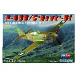 P-40 B/C HAWK-81 1/72 hobby Boss